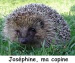 Joséphine85