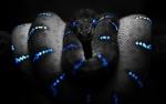 Snake62