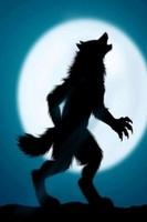 ChaoticWerewolf