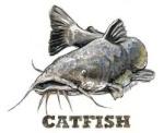 Catfish1927