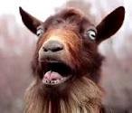 Mountain Goatee