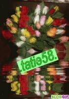 tatie58