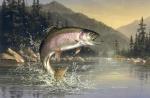 Pescasusinho