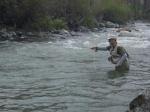 Pescate