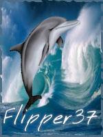 flipper37
