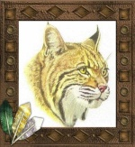 MrBobcat12