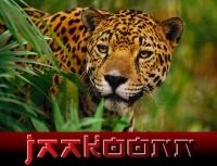 JaakooNn