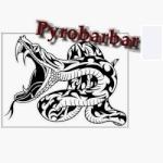 Pyro barbar