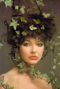 Le forum du Monde secret de Kate Bush 45-67
