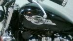 Viageiro Rider