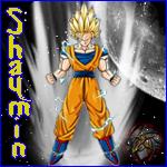 shaymin889expert