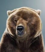 Mightybear