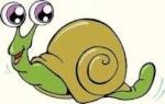 cloclo l'escargot