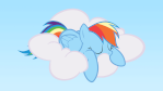 ~Rainbow Dash~