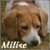 Milise
