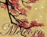Meleora
