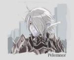 Pelemnor