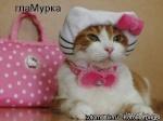 Таня_КТВ