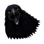 Black Crow  TALON 
