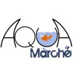 AquaMarché