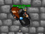 AeroxDruid