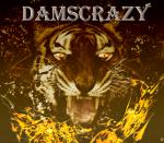 DamsCRAZY
