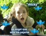 mickyflopi