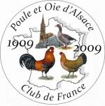 Poule d'Alsace