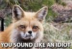 Sepiatone Fox