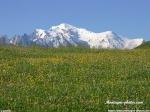 Vie de la vallée de Chamonix 26-56