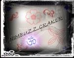 nimbuzz.craker