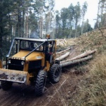 LE FORESTIER 68