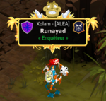 Runayad