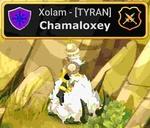Chamaloxey