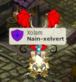 Nain-xelvert
