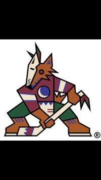 DG Coyotes
