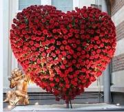 ange coeur de roses