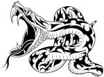 snake ATR