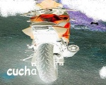 cucha