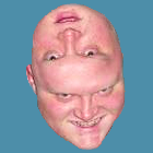 Figgot