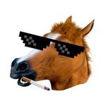 Cavalo133