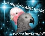 ParrotGirl (Admin)