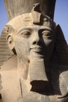 Pharaohanon