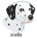 irielle