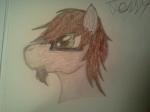 Earth-pony-mischief