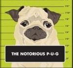Notorious P.U.G.