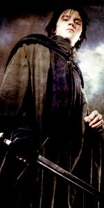 Cesare Di Angelo