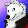 Shayu Wolf