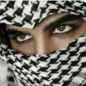 mohammad_rmz