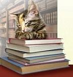 Chat de bibliothèques